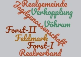 wordcloud-Realgemeinde-3